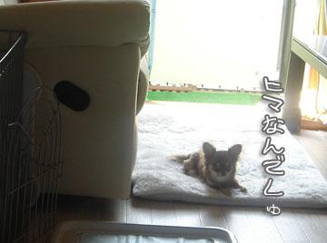sonzai4.jpg