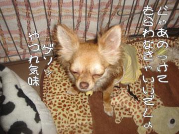 sonzai7.jpg
