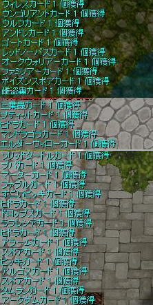 20080504 (9)