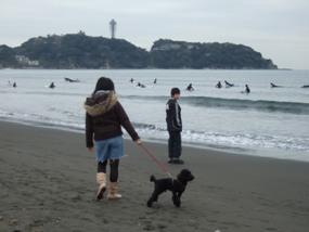 026江ノ島