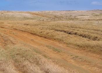 グリーンサンドビーチトレイル