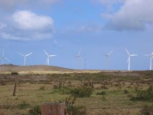 サウスポイント新風車