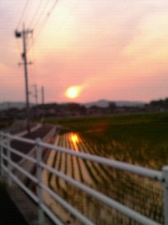 PIC_0156.jpg