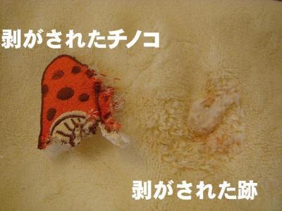 2008032004.jpg