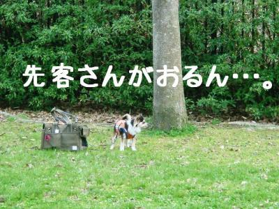 2008032803.jpg