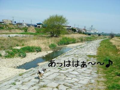 2008040510.jpg