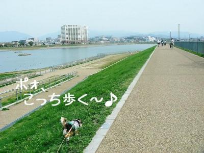 2008040608.jpg
