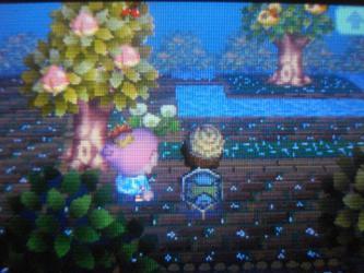 ベルの木に気付いた!!