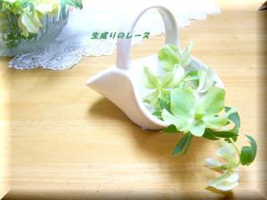 P1120160ブログ