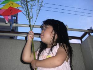 CIMG2791_convert_20080703214833.jpg