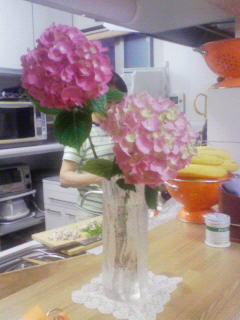 2008_0603プチお花見 0264