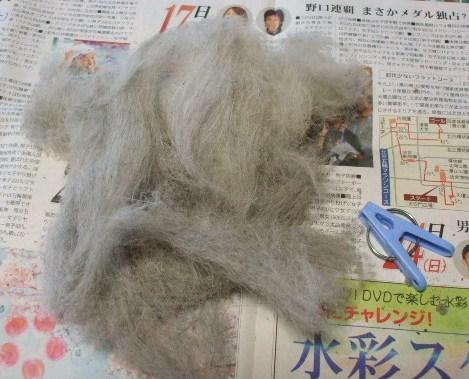 毛がてんこ盛り