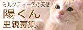 you_kun.jpg