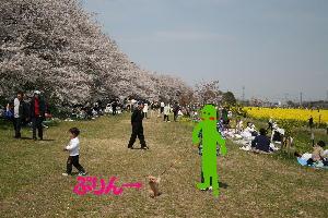 IMG_63311.jpg