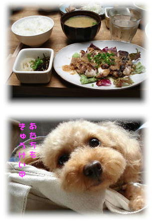 lunchchum1.jpg