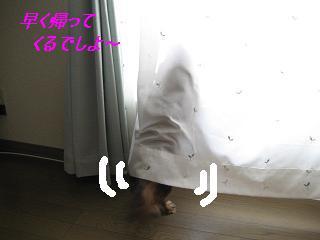 IMG_0214おみおくり