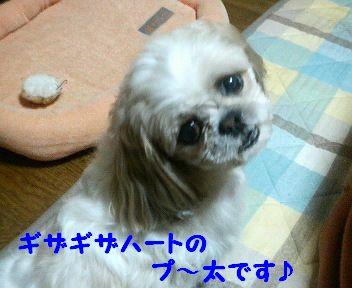 200803312317000.jpg