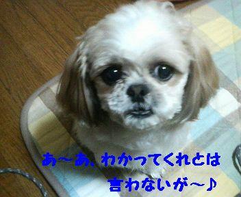 200803312318000.jpg