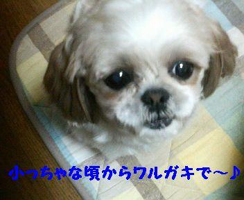 200803312321000.jpg