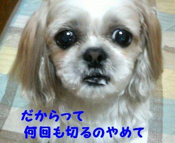 200804162309000.jpg