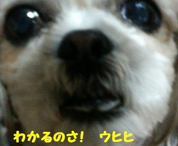 200804182039000.jpg