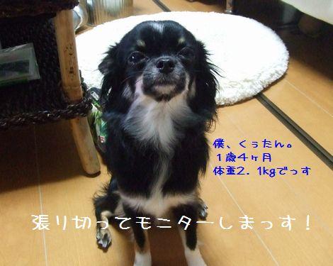 042_20080606191138.jpg