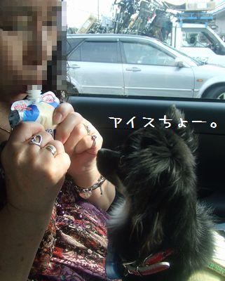 051_20080705194613.jpg