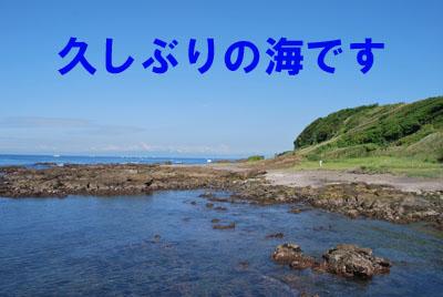 久しぶりの海です