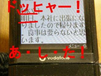 boke7_20080613001324.jpg