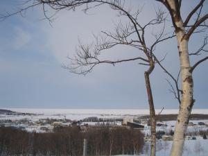 流氷3月1日丘の上
