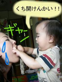 0061_convert_20080708233845.jpg