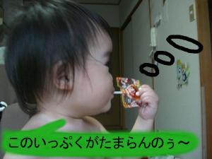 0101_convert_20080711220845.jpg