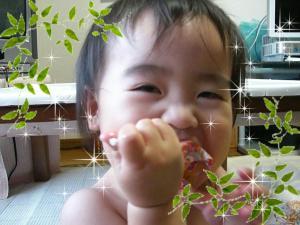 0161_convert_20080711220926.jpg