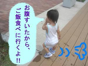 08015_convert_20080801142229.jpg