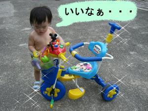 08042_convert_20080804235708.jpg
