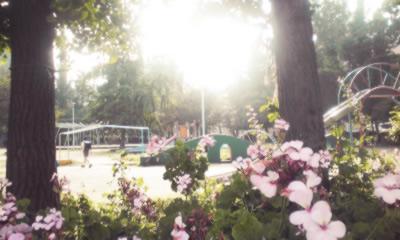 野崎公園-3