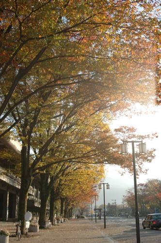 岡崎公園2004