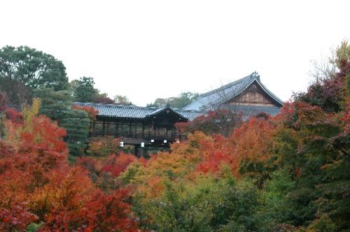 東福寺2004