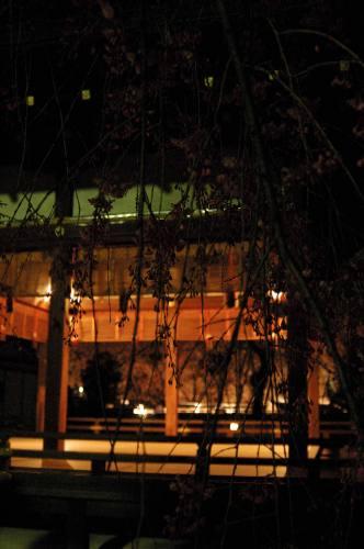 平野神社の夜桜2006