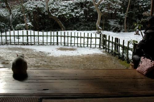 2006初春 祇王寺