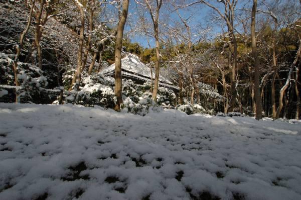雪の祇王寺1