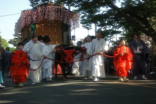 葵祭・賀茂街道11
