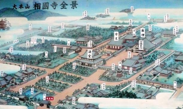相国寺の蓮8