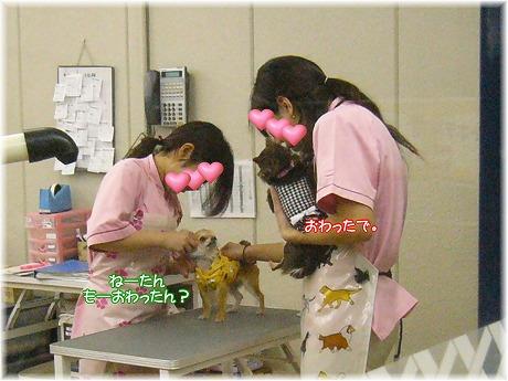 2008-03-22-9.jpg