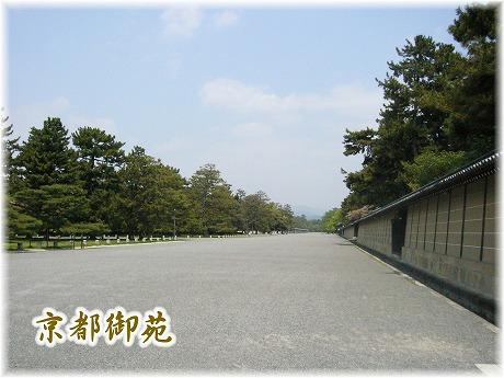 2008-04-27-2.jpg
