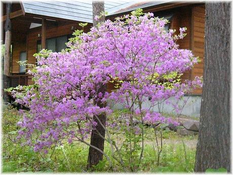 2008-05-05-02.jpg