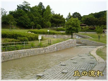 2008-06-15-02.jpg