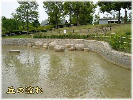 2008-06-15-03.jpg