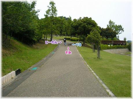 2008-06-15-04.jpg