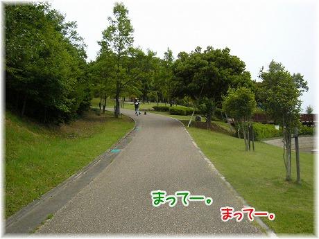 2008-06-15-05.jpg
